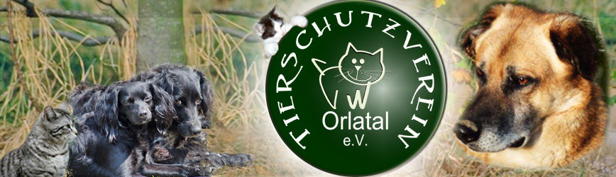 Tierschutzverein Orlatal e.V.